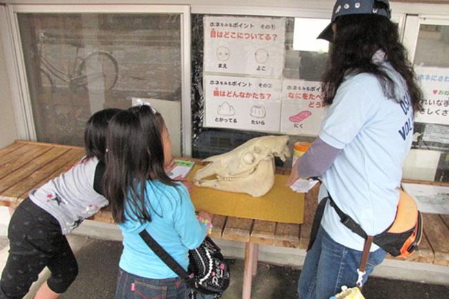 大阪動物園ボランティアーズ